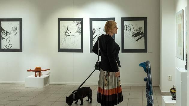 Kdo si hraje, nezlobí - výstava Evy Vlasákové v českotřebovském Kulturním centru.