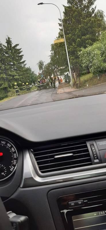 Průtrže na Lanškrounsku a Žamberecku. Spadlý strom v Letohradě