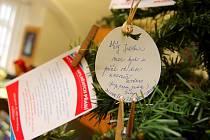 Strom splněných přání v Ústí nad Orlicí.