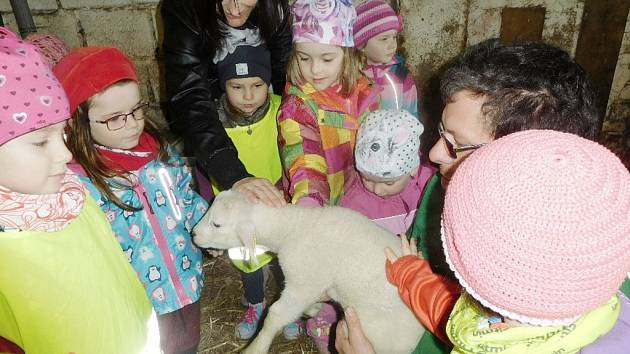 Děti z MŠ Helvíkovice na výletě v chovné stanici Fitmin-Dibaq.