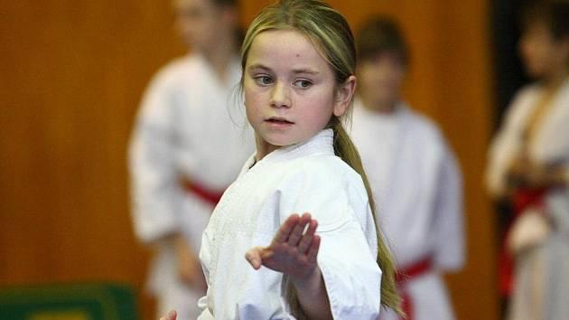 Turnaj O pohár starosty města v karate.