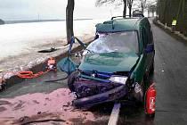 Tragická nehoda se stala v sobotu odpoledne mezi Poličkou a Jedlovou. Auto narazilo do stromu, spolujezdkyně zemřela, dítě a řidič skončili v nemocnici.