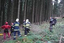 Paraglidistu visícího na stromě zachránili až hasiči s členy Horské služby.