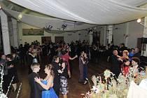 Charitní ples 2015