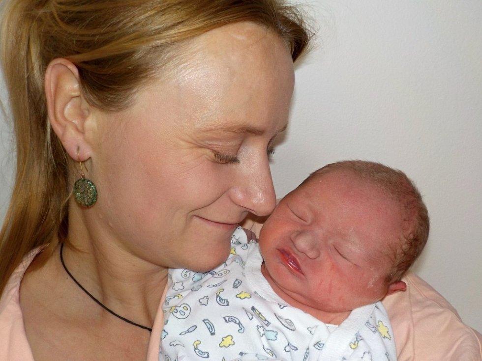 Jan Najman je prvorozený syn Jany a Jana z Hradce Králové. Narodil se 12. 11. v 18.45 hodin a vážil 2920 g.