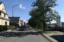 Stromořadí v ulici Jana a Josefa Kovářů v Ústí nad Orlicí, které má být kvůli výstavbě nového centrálního příjmu vykáceno.