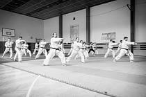 Oddíl karate v Ústí nad Orlicí oslavil 30 let.