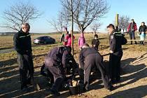 V sobotu 17. listopadu byla v Koldíně slavnostně zasazena lípa věnovaná výročí republiky.