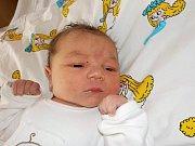 Mia Hegerová je prvorozená holčička Michaely Hruškové a Milana Hegera z Tatenice. Na svět přišla s váhou 3330 g dne 29. 10. v 16.19 hodin.
