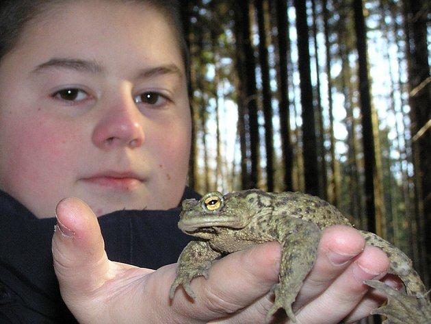 Děti se těšily z každé zachráněné žáby.