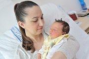 Veronika Kvapilová bude doma s rodiči Veronikou a Jaroslavem a bratříčky Jaroslavem a Josefem v Letohradu. Holčička se narodila 10. dubna ve 22.44 hodin a po porodu vážila 3,29 kg.