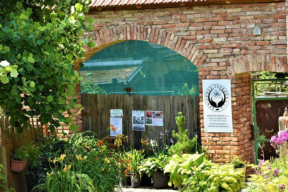 Denivkovká výstava se v Mravíně koná každoročně.