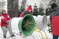 Prodej vánočních stromků v Oucmanicích.