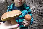 Kateřina Foglarová si na houby vzala malého velkého pomocníka.