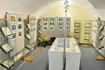 Výstava v Letohradě.