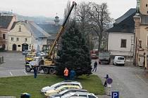 Na Václavském náměstí v Letohradě už nainstalovaly Technické služby města vánoční strom