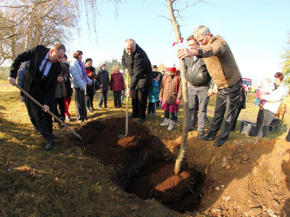 Na rozhraní Horní a Dolní Čermné byla vysazena lípa, jež připomíná 25 let partnerství Ústí nad Orlicí s Berlinem-Neuköllnem.