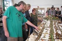 Houbařská výstava v Chocni 2015.