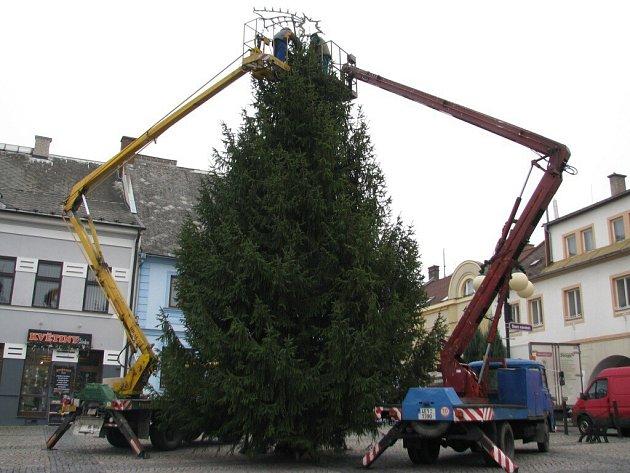 V České Třebové instalovali vánoční strom.