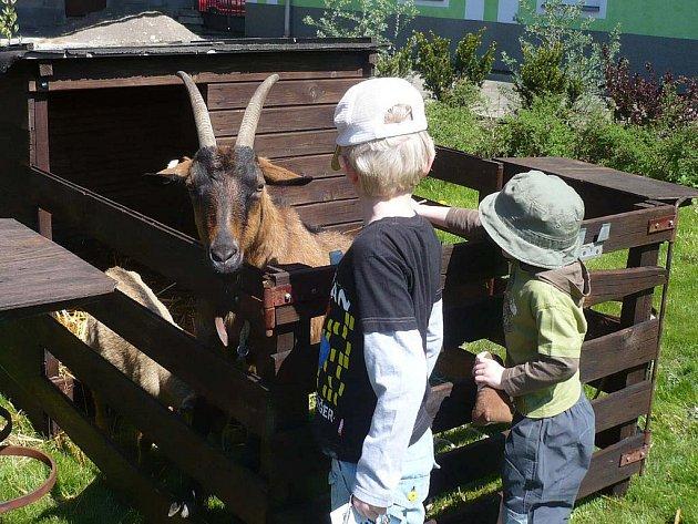 Den školy ve Střední zemědělské škole Lanškroun.