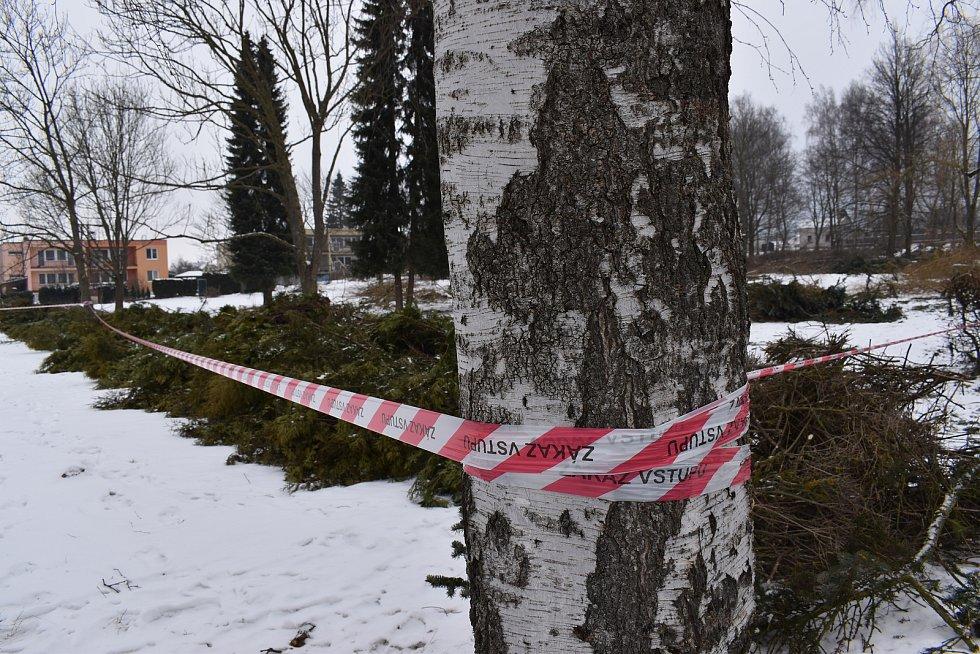 Kácení vzrostlých stromů a keřů u krematoria v České Třebové vzbudilo u veřejnosti silnou nevoli.