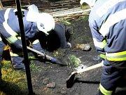 Koně z jímky vytáhli hasiči pomocí popruhů.