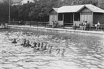 První snímek zachytil několik spokojených milovníků vodních sportů vykukujících nad hladinu řeky Třebovky na starém koupališti v Bezděkově  u dnešního domova důchodců zrušeného v roce 1938. Vpravo je vidět jedna ze šaten.