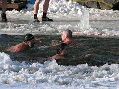 Je libo zaplavat si mezi ledy?