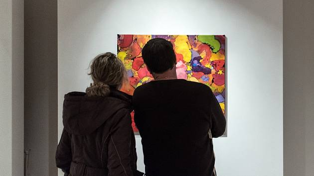 Vystavili grafické malby.