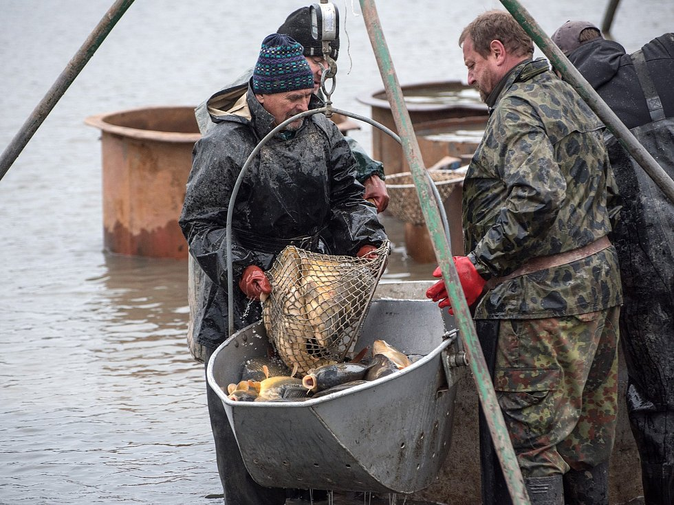 Na tradičním výlovu prodávali i ryby na grilu.