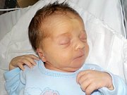 Dominik Siegl je po Jindříškovi druhý syn Petry a Jindřicha z České Třebové. S váhou 2960 g se narodil dne 1. 2. v 12.37 hodin.