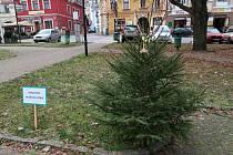 """Vánoční soutěž s názvem """"Stromeček splněných přání"""" potrvá do 23. prosince."""