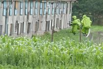 Dekontaminace prostor farmy.