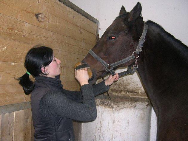 Na snímku je spolu s Peruánem ošetřovatelka koní  Kateřina Kolbabová.