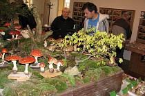 Choceňská výstava hub  byla opět poučnou a jedinečnou podívanou.