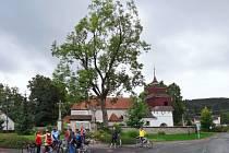 Den Regionu Orlicko-Třebovsko.