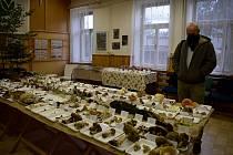Výstava hub lákala na 263 druhů, mezi nimi byly i vzácné exponáty