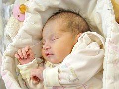 Ella Kousková dělá radost mamince Elišce Búdové z Hrádku. Narodila se jí 2. ledna v 5.10 hodin s hmotností 2,27 kg.