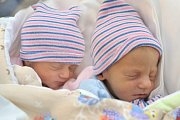 Dvojčátka Vojtěch a Viktorie Hynkovi se narodila Lence a Tomášovi ze Sopotnice. Na svět přišel první Vojtěch, světlo světa spatřil 30. 1. v 7.48 hodin s váhou 2,770 kg, Viktorie se narodila v 7.50 a vážila 2,710 kg. Bratříček se jmenuje Adámek.