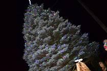 Zatímco centrum Letohradu se vánoční strom i výzdoba rozzáří až v neděli večer, o den dříve se rozsvítily žárovky na vánočním stromku u domku Faltusových v letohradské části Jankovice.