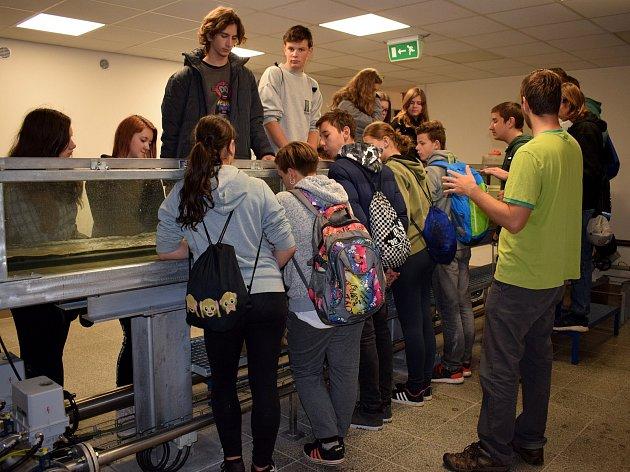 TECHNOhrátky zdolaly ve Vysokém Mýtě kótu 10 000 žáků - cesta napříč seznamkou řemesel jim trvala šest let.