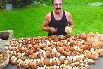 Vrchol houbařské sezony přichází většinou až v září.