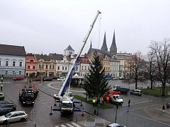 Usazování vánočního stromu na náměstí Přemysla Otakara II. ve Vysokém Mýtě.