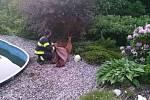 Ve středu vyráželi dobrovolní hasiči z Jablonného nad Orlicí zachránit srnce, který spadl do bazénu.