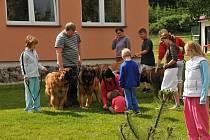 V Dolní Čermné se konalo setkání leonbergrů.