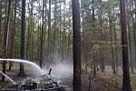 Požár lesa zřejmě založil žhář.