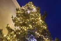 Letos poprvé v městské části Kerhartice u školy připravili slavnostní rozsvícení vánočního stromu.