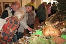 Výstava hub pořádaná Mykologickým klubem Choceň.
