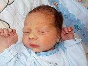 Dominik Vaněček je prvorozený syn Pavlíny a Václava z Líšnice. S váhou 2790 g se narodil dne 25. 2. v 11.57 hodin.