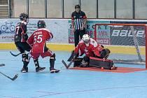 Zápasy Světového poháru v hokejbalu kategorie juniorů a dorostenců.